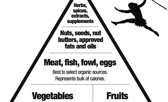 Paleo diet and crossfit a blueprint for health vibrant wellness healing diets paleo pyramid malvernweather Choice Image