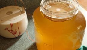 How to Brew Kombucha Tea
