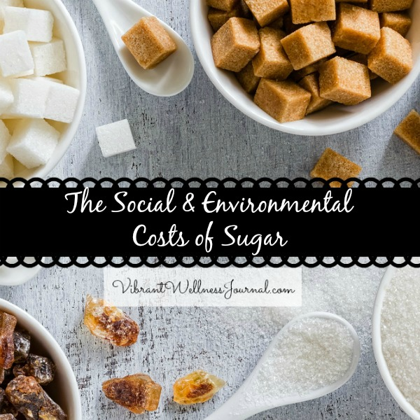 The Social & environmental cost of Sugar