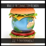 connection between diet and environment