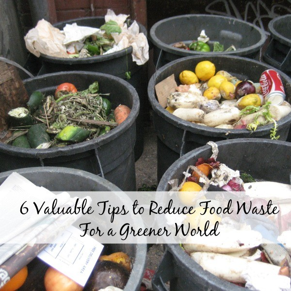 6 Valuable Tips to Reduce Food Waste For a Greener World