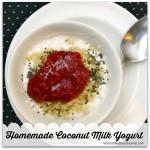 Homemade Coconut milk Yogurt 2