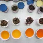 tea tasting from NPR